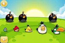Angry Birds Золотое Яйцо 12